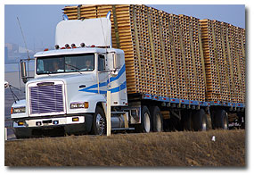 Tax Preparation Insurance Truckers Couriers